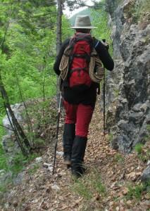 Planinarski stapovi
