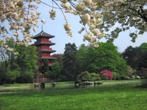 Brisel Japanski vrt