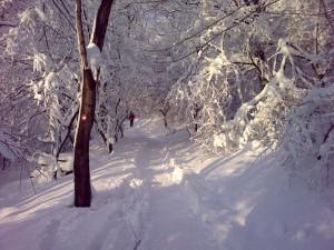 Staza pod snegom za vrh Avale