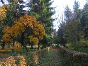 Arboretum, lep park