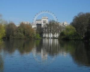 Iz parka StJames pogled na veliki tocak London Eye