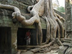 Angkor alt