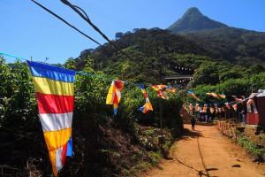 Staza ka Adamovom vrhu je osvetljena i okicena budistickim zastavicama